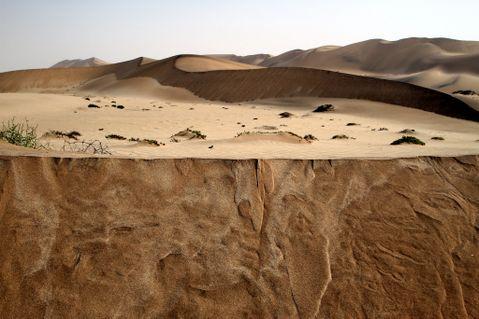 DuneSwakop6
